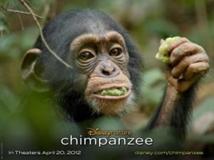 Chimpanzee Disney Movie
