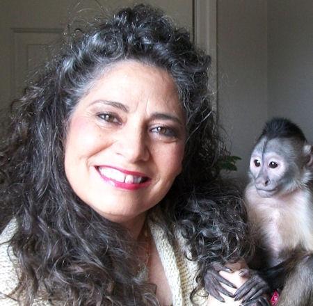 wedge-cap capuchin