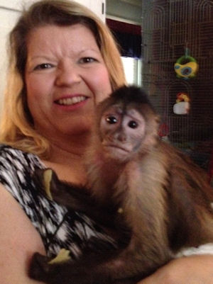 lisa and sophie the capuchin at age 7