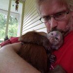 dora capuchin cuddle