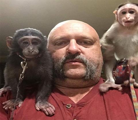 dog collar for monkeys