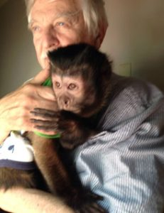 10 year old capuchin monkey