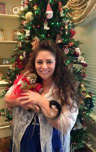christmas squirrel monkey