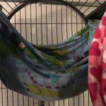 primate blanket hammock