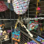 squirrel monkey play cage