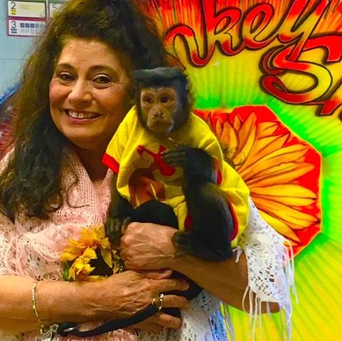 traveling monkeys