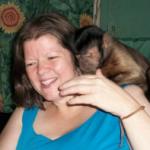 single capuchin monkey