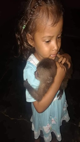 baby capuchin with young child